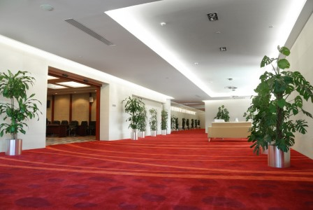 Chapmansboro carpet cleaning by Impact Commercial Cleaning Services, LLC